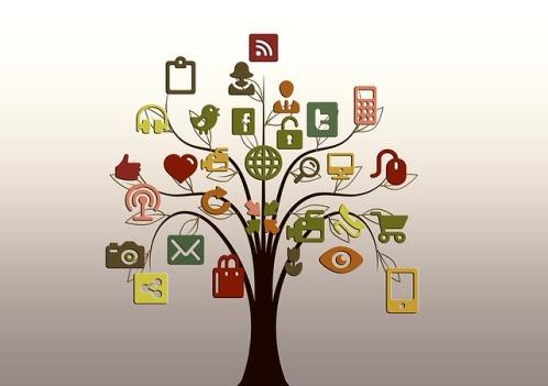 sm tree pixabay